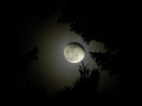 فوائد النوم في الظلام 3834295881248680252.